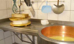 Käseherstellung